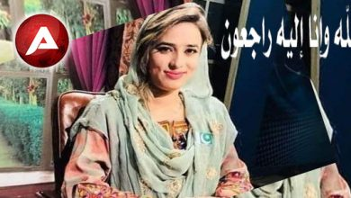 Photo of معروف آرٹسٹ و سماجی کارکن شاہینہ شاہین قتل